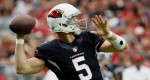 Drew Stanton Cardinals football