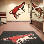 Turning The Page: Coyotes Look To Upcoming Season