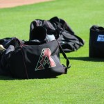 Diamondbacks' Gosewisch Remains Connected with Horizon