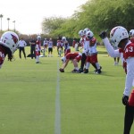 GALLERY: Cardinals OTAs