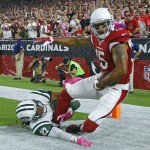 No Room In The Nest: Cards Cut Floyd