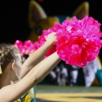 FRIDAY NIGHT SIGHTS: Horizon vs Desert Mountain